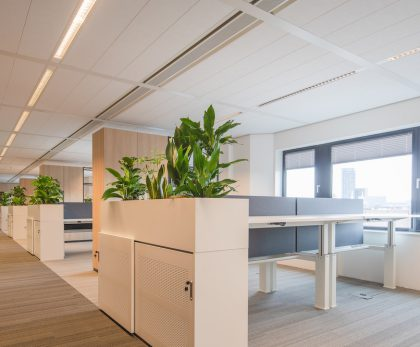 Hivos: Interior Design & Move Management